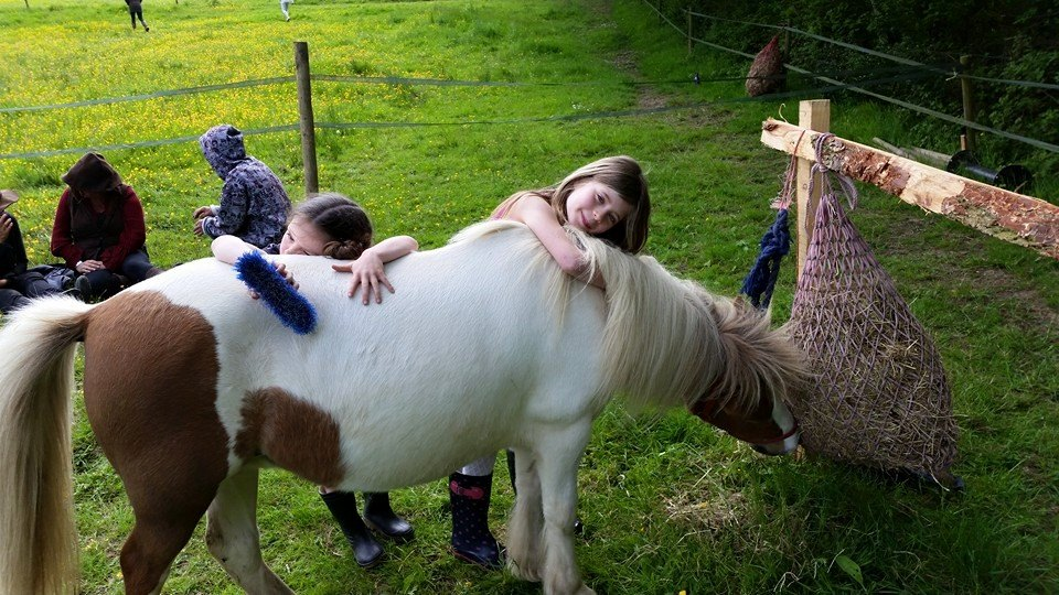 Children petting a pony eating hay