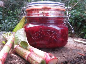 This tasty Japanese knotweed and beetroot relish can be enjoyed with anything you fancy!